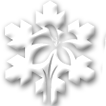 Silver_Mountain.icon