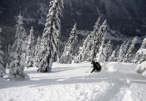 Stevens Pass powder skier